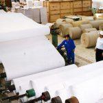 Nhân sự, yếu tố đóng vai trò quyết định không chỉ cho doanh nghiệp sản xuất giấy