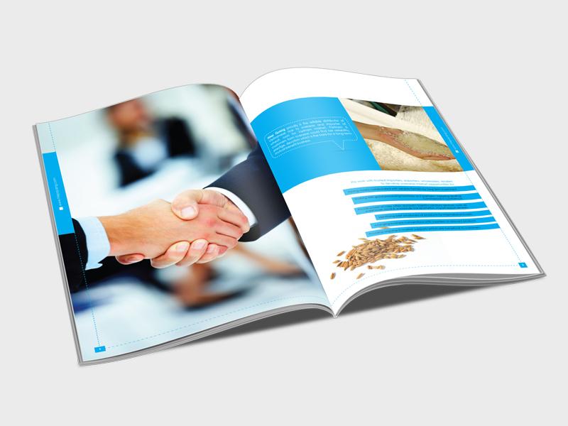 Dịch vụ in Catalogue rẻ và đẹp tại Gò Vấp