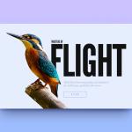Thủ thuật kết hợp chữ và hình ảnh trong thiết kế
